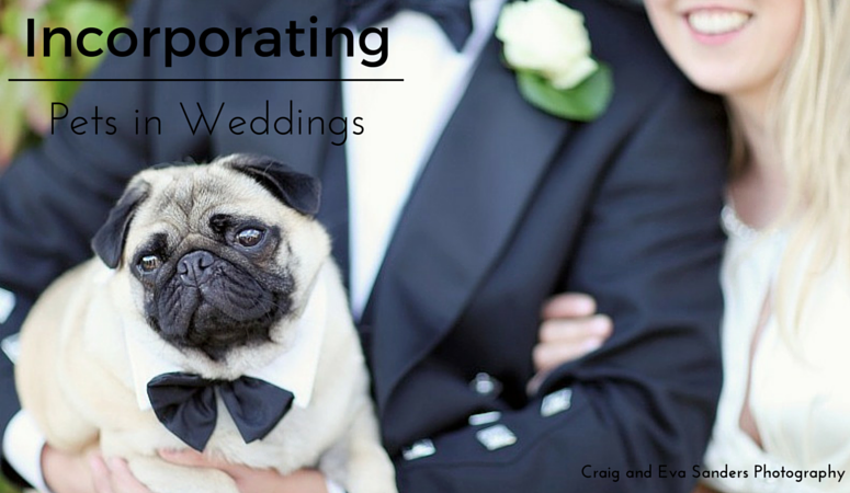 Incorporating Pets into Your Wedding